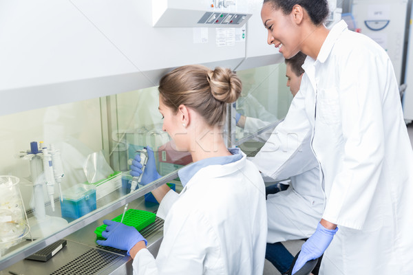 Group of scientists working in research laboratory Stock photo © Kzenon