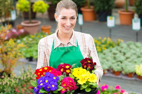 Gardener in market garden or nursery Stock photo © Kzenon