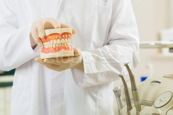 Dentist in his surgery, he holds a denture Stock photo © Kzenon