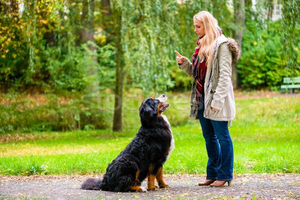 Meisje najaar park opleiding hond gehoorzaamheid Stockfoto © Kzenon