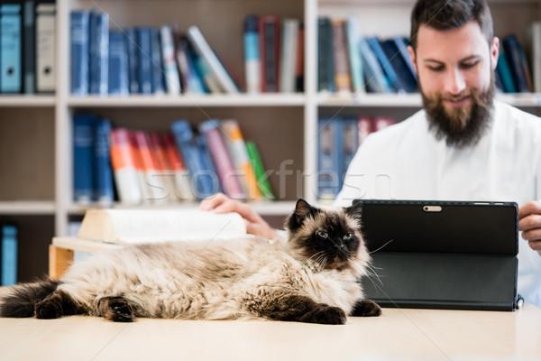 Veterinario médico gato médicos información Foto stock © Kzenon