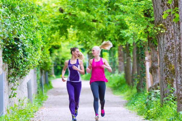 Kadın spor jogging park iki kadın çalışma Stok fotoğraf © Kzenon
