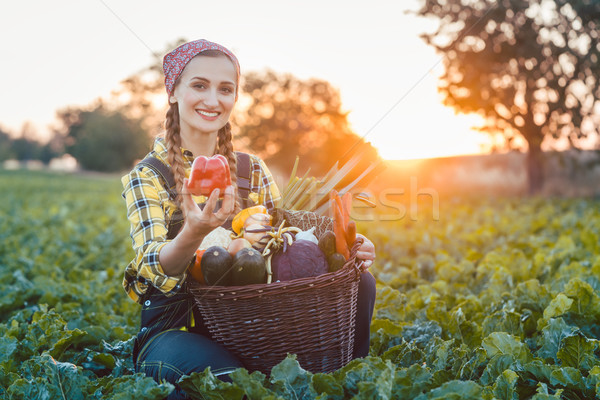 Farmer woman selling colorful and healthy vegetables Stock photo © Kzenon