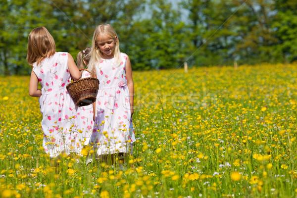 子供 イースターエッグハント 草原 春 見える ストックフォト © Kzenon