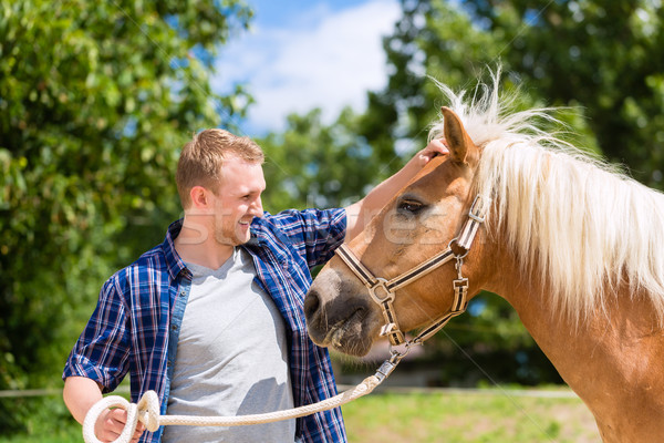 Man petting horse on pony farm Stock photo © Kzenon
