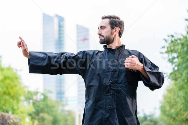 Martial arts sportsman practicing karate in city Stock photo © Kzenon