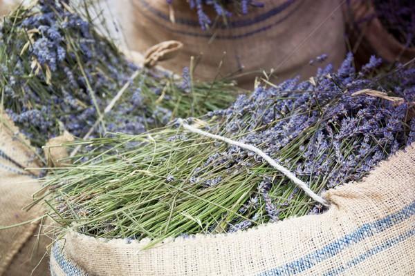 harvest lavender Stock photo © laciatek