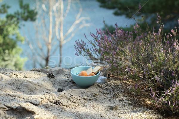 Sonbahar piknik doku mum kahvaltı yeme Stok fotoğraf © laciatek
