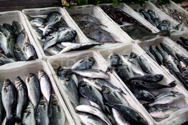 Taze balık deniz bas pazar mutfak Stok fotoğraf © laciatek