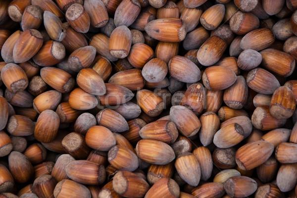 Hazelnoten textuur voedsel achtergrond plant eten Stockfoto © laciatek