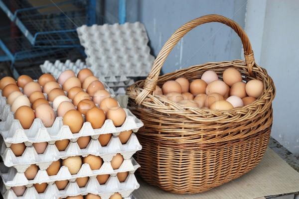 Yumurta ülke yumurta arka plan tavuk hayvan Stok fotoğraf © laciatek