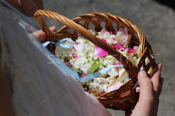 Cesta flores pétalas casamento rosa Foto stock © laciatek