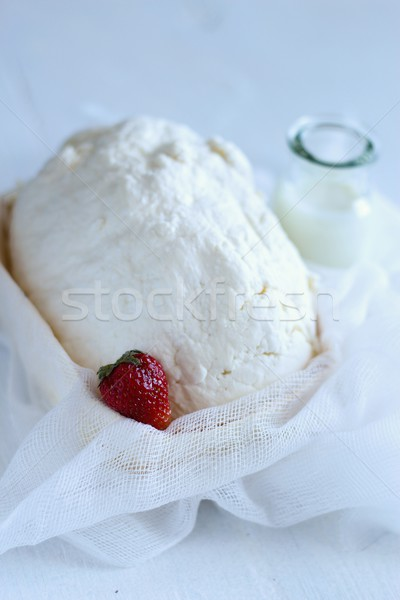 dairy products: cheese, curd, milk Stock photo © laciatek