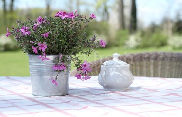 Bloemen tabel buitenshuis tuin gratis lucht Stockfoto © laciatek