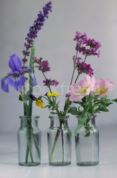 three glas bottles with flowers  Stock photo © laciatek