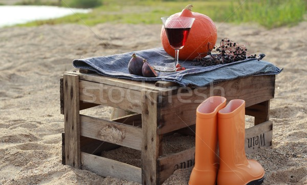 Stockfoto: Najaar · picknick · wijn · vak · strand · landschap