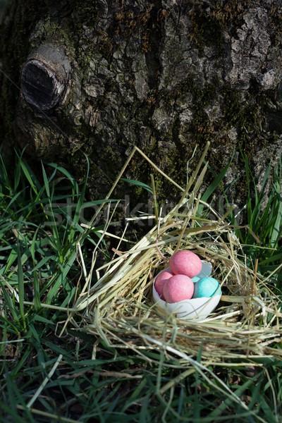 Pasen nest snoep gelukkig viering zoete Stockfoto © laciatek