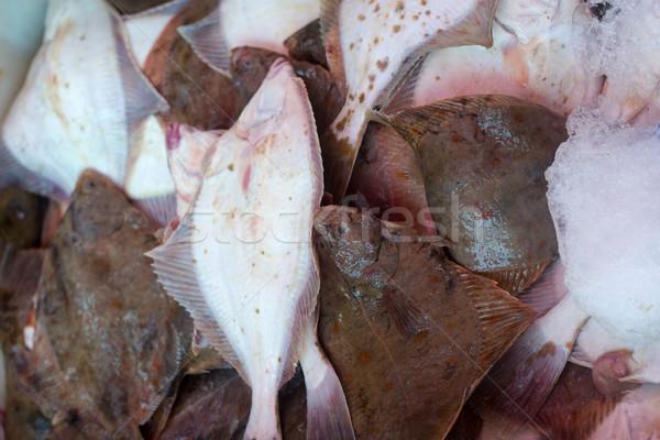 Fresh flounder at the fish market<br> Stock photo © laciatek