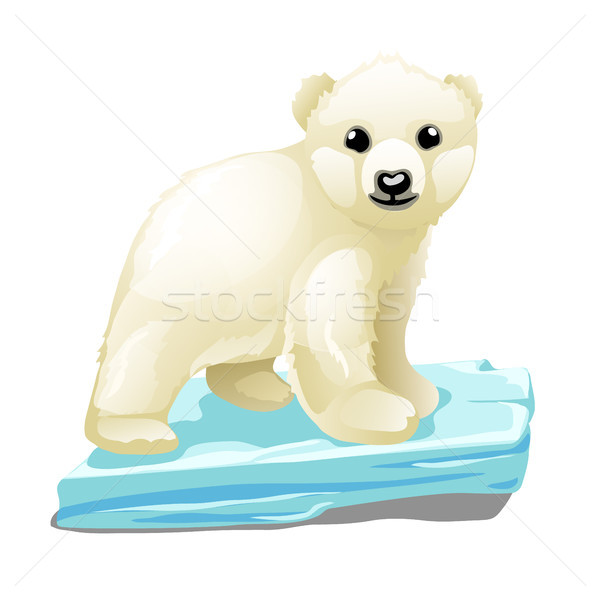Stock photo: Cute polar bear floats on a drifting ice floe isolated on white background. Vector illustration.