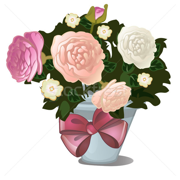 A gift of potted flowers isolated on white background. Vector cartoon close-up illustration. Stock photo © Lady-Luck