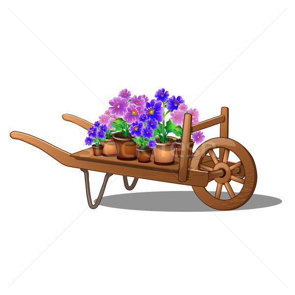 Houten winkelwagen bloemen geïsoleerd witte cartoon Stockfoto © Lady-Luck