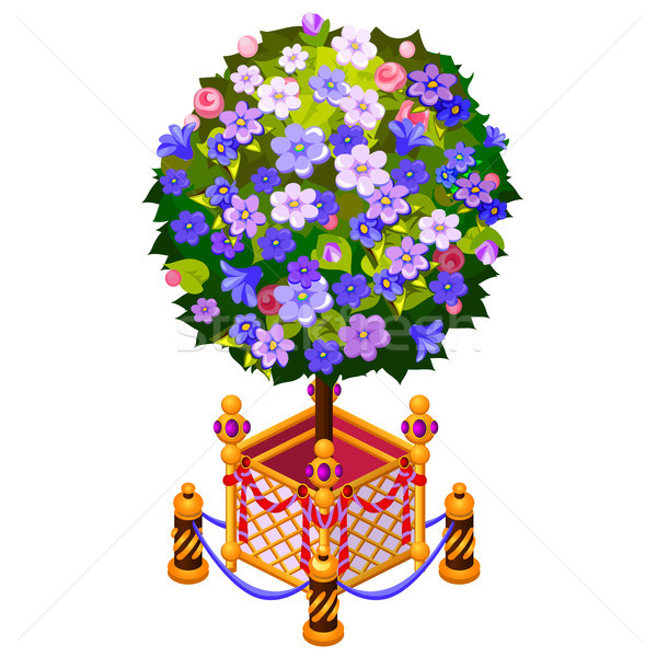 Compact tree in golden pot with fence isolated on white background. Vector cartoon close-up illustra Stock photo © Lady-Luck