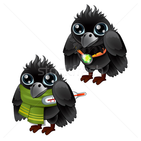Healthy and diseased jackdaw isolated on white background. Vector cartoon close-up illustration. Stock photo © Lady-Luck