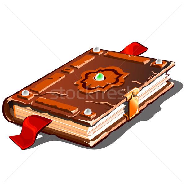Bağbozumu kitap kahverengi kapak yalıtılmış beyaz Stok fotoğraf © Lady-Luck
