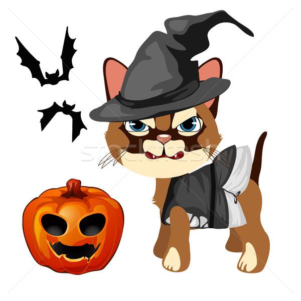 сердиться кошки Hat ведьмой острый зубов Сток-фото © Lady-Luck