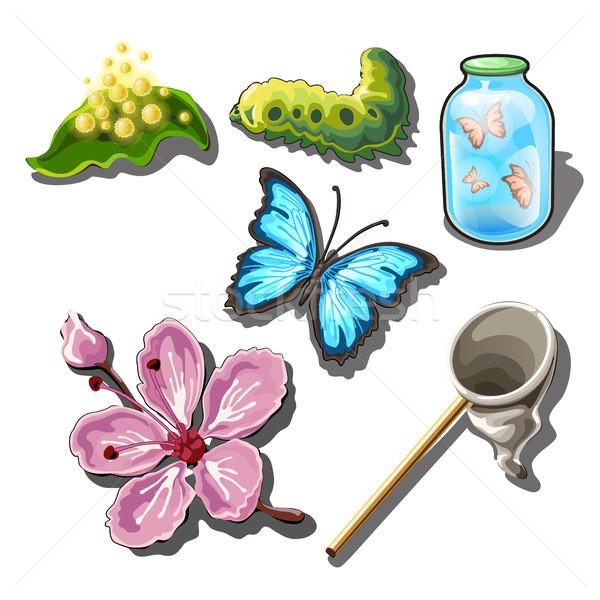 Ayarlamak nesneler kelebekler yalıtılmış beyaz vektör Stok fotoğraf © Lady-Luck