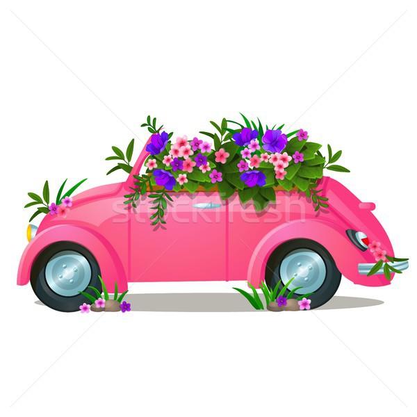 Klasszikus rózsaszín autó növekvő virágok izolált Stock fotó © Lady-Luck