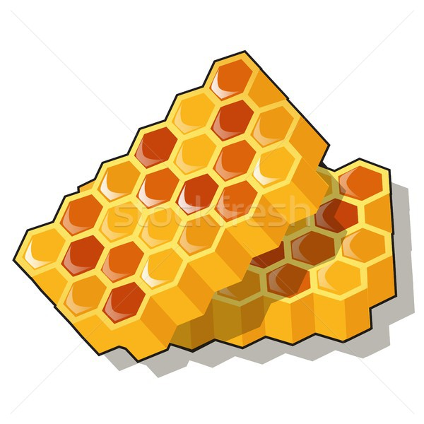 Sweet golden honeycomb with honey isolated on white background. Natural healthy food. Vector cartoon Stock photo © Lady-Luck