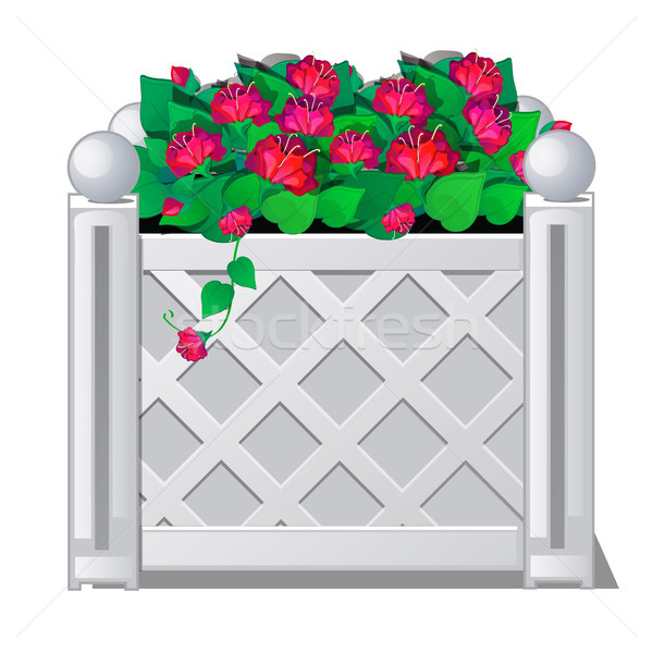 Decorative fence with red flowers. Vector illustration. Stock photo © Lady-Luck
