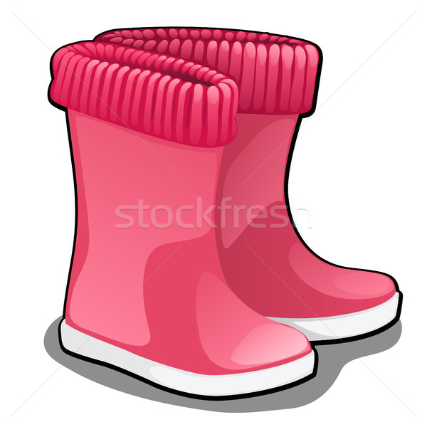 Stylish pink rubber boots or wellingtons isolated on white background. Vector cartoon close-up illus Stock photo © Lady-Luck