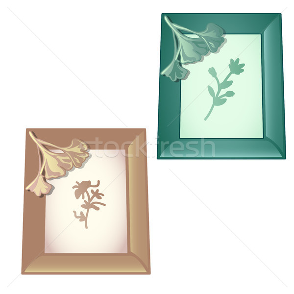 Two wall-mounted wooden frame with designs on the theme of vegetable isolated on white background. V Stock photo © Lady-Luck