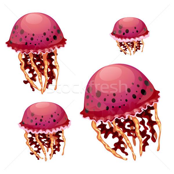 набор красный медуз изолированный белый вектора Сток-фото © Lady-Luck