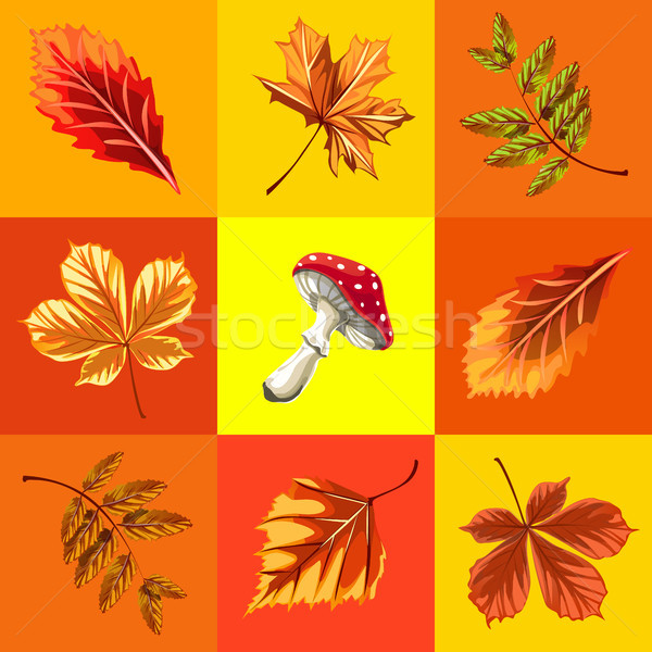 Cute poster or greeting card with modern design on theme of golden autumn. Ornate set of fallen autu Stock photo © Lady-Luck
