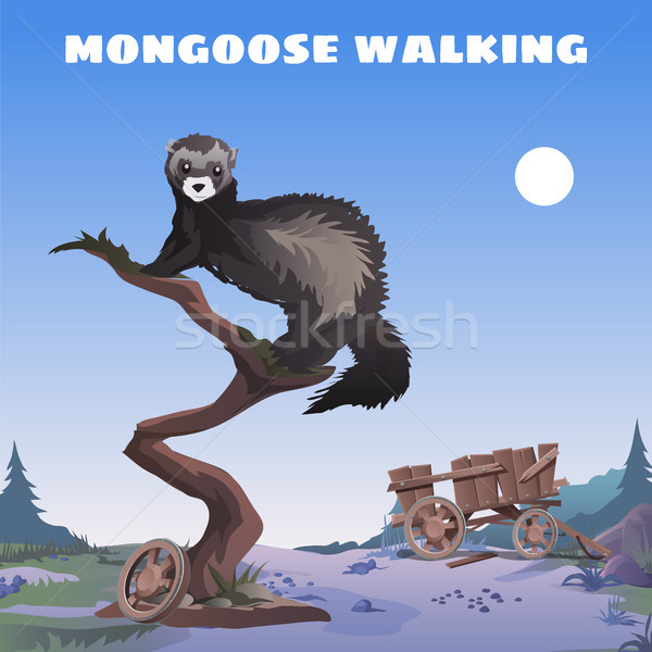 Cute poster in wild West style. Walking mongoose sitting on the trunk of dead tree on background of  Stock photo © Lady-Luck