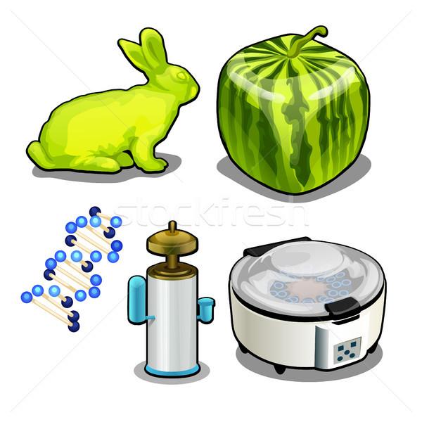 Establecer tema genético laboratorio aislado blanco Foto stock © Lady-Luck
