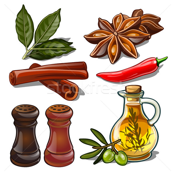 Set of spices isolated on white background. Image of ingredients for a cookbook. Vector illustration Stock photo © Lady-Luck