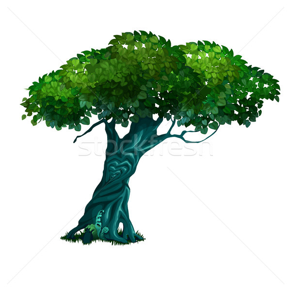 Stock photo: Lonely old deciduous tree isolated on white background. Vector cartoon close-up illustration.