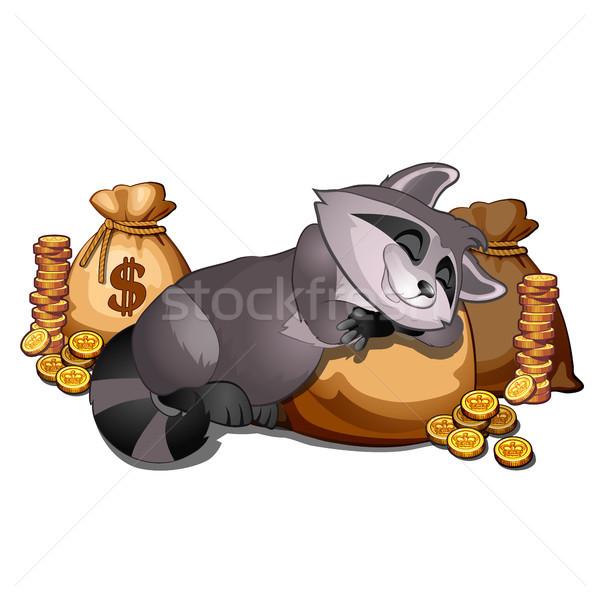 Rijke wasbeer slapen zak gouden munten geïsoleerd Stockfoto © Lady-Luck