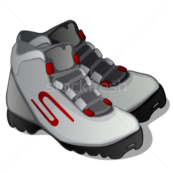 Pair of grey ski boots isolated on white background. Modern clothing for winter sports. Vector illus Stock photo © Lady-Luck