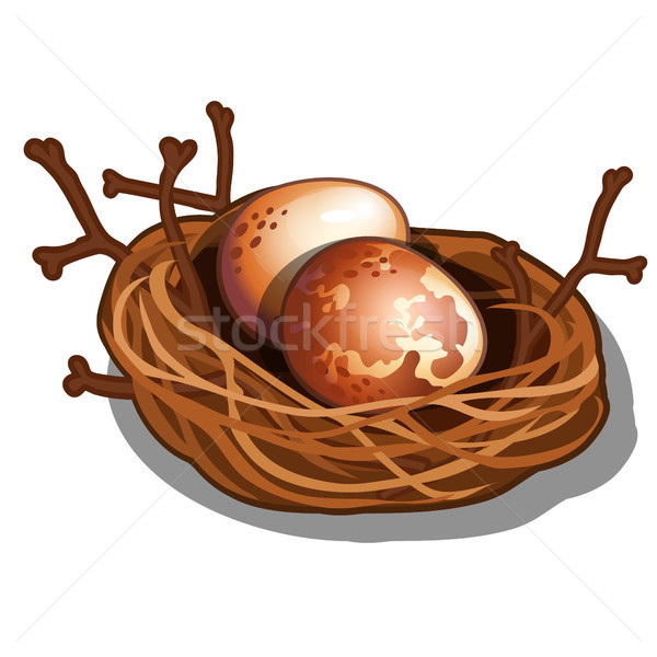Woven straw nest with twigs isolated on white background. Eggs of wild birds. Vector cartoon close-u Stock photo © Lady-Luck