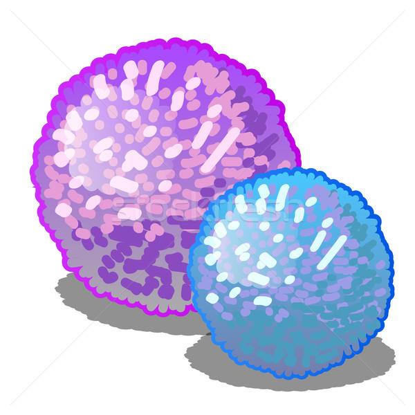 Ayarlamak iki karikatür pembe mavi Stok fotoğraf © Lady-Luck