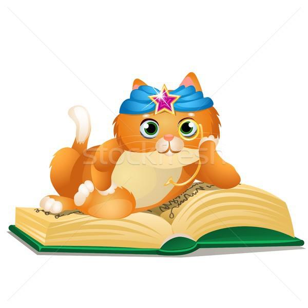 スマート 猫 図書 孤立した 白 ベクトル ストックフォト © Lady-Luck