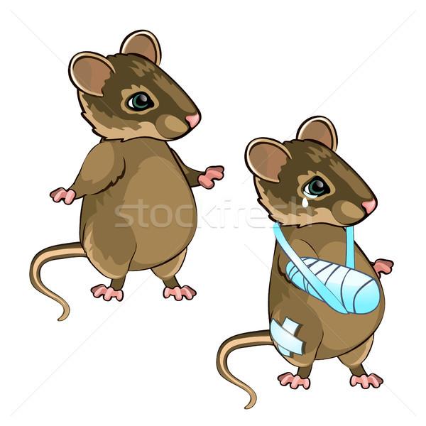 Gezonde muis geïsoleerd witte vector cartoon Stockfoto © Lady-Luck