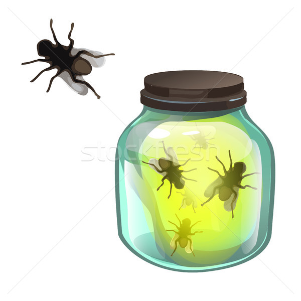 Glass transparent jar with flies inside isolated on white background. Vector cartoon close-up illust Stock photo © Lady-Luck