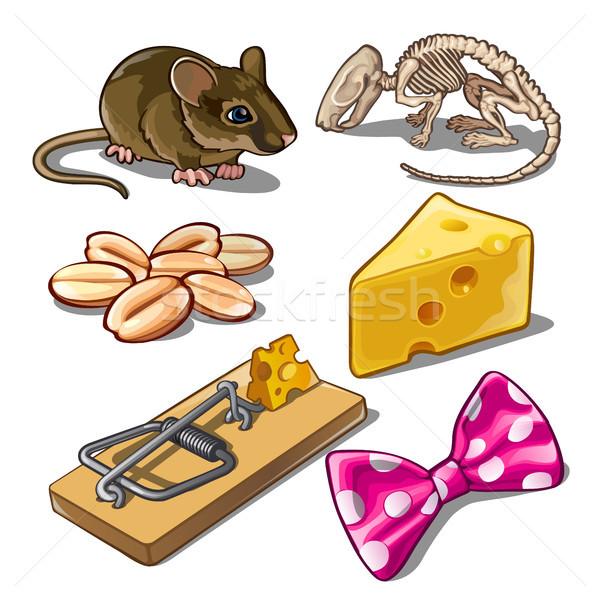 Szett tárgyak egerek egér művészet állatok Stock fotó © Lady-Luck