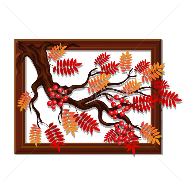 装飾 ハンドメイド 液果類 葉 ストックフォト © Lady-Luck